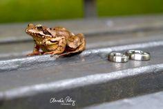 Trauringe mit Frosch ;) | Claudia Pelny Fotografie, Hochzeitsfotografie Raum Bamberg, Nürnberg, Ansbach, Kronach Wedding Details, Bling, Animals, Bamberg, Wedding Photography, Jewel, Animaux, Animal, Animales