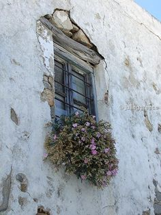 Serifos - window Windows And Doors, Greece, Island, Places, Life, Greece Country, Islands, Lugares