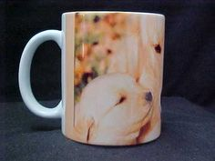 Golden Retriever Dog with 2 puppy's on coffee mug that changes before your eyes! ONLY $14.95, See it at http://www.ebay.com/itm/Golden-Retriever-Dog-2-puppys-11-oz-Magic-Morph-Color-Change-Coffee-Mug-/120883396991?pt=LH_DefaultDomain_0=item1c2536417f#ht_626wt_1014