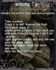 Witchy tip walnuts Magick Spells, Wiccan Witch, Luck Spells, Witchcraft Spells For Beginners, Wicca For Beginners, Wiccan Magic, Green Witchcraft, Voodoo Spells, Healing Spells