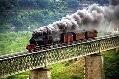 D. Pedro V inaugurou a primeira linha de comboio em Portugal