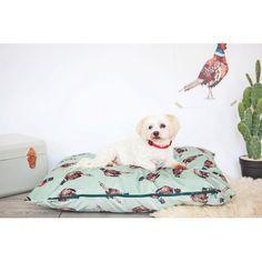 Running Pheasant Velvet Dog Bed Archie & Oscar