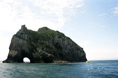 A cruise to the Hole in the Rock is one of the best activities in Paihia