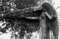Η ΜΟΝΑΞΙΑ ΤΗΣ ΑΛΗΘΕΙΑΣ: Black Angel: Το καταραμένο άγαλμα που «σκοτώνει» ό...