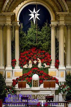 All red decor Church Christmas Decorations, Christmas Stage, Christmas Service, Christmas Flowers, Altar Decorations, Christmas Nativity, All Things Christmas, Holiday Decor, Xmas