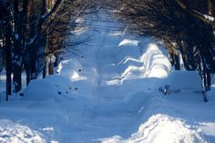 Road officials respond to complaints of poor snow clearance, after historic storm hits DC area @WTOP / Dennis Foley