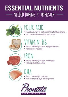 32 Best Diet Nutrition During Pregnancy Images Diet Nutrition