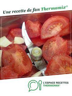 Sauce aux Tomates Crues Rafraichissante par 100drine 57. Une recette de fan à retrouver dans la catégorie Sauces, dips et pâtes à tartiner sur www.espace-recettes.fr, de Thermomix®.
