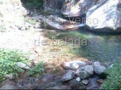 PACO BANDEIRA - Minha 5ª sinfonia - YouTube
