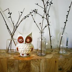 What a Hoot... I love quirky things like this too cute owl!