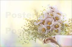 UtArt - Gänseblümchen in LOVE