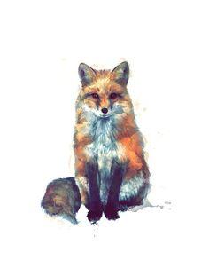 the colourful fox