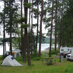 Camping Water, Tent Camping, Montana Lakes, Conifer Forest, Flathead Lake, Colorado State University, Park Around, Summer Bucket Lists, Lake Superior