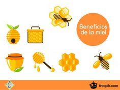 ¿Cuáles son los beneficios de la miel?