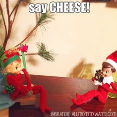 Elf on the Shelf Double Trouble - Cheeeese. - 1499558 10201663663651524 980227144 n  -  13 Ideas With TWO Elves....