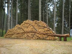 The 23 Most Oddly Satisfying Photos You'll Ever See What a creative way to stack firewood! Land Art, Firewood Logs, Firewood Storage, Firewood Holder, Lumber Storage, Satisfying Photos, Oddly Satisfying, Art Conceptual, Sculptures