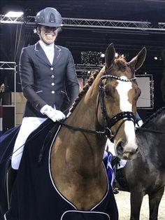 Dutch Warmblood, Warmblood Horses, Dressage Horses For Sale, Horse Breeds, Riding Helmets, Fashion, Moda, Fashion Styles, Fashion Illustrations
