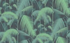 Palm Jungle (95/1003) - Cole & Son Wallpapers - A multi layered design of palm leaves creating a dense jungle of foliage, shown here in emerald green and turquoise blue on a black background. Please order a sample for true colour match. Paste-the-wall product.