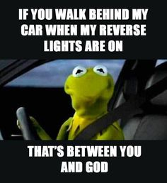 Hahaha, that's funny. Sorry to say, that's between you and your lawyer. Get ready to dish out big mula for damages! Funny Kermit Memes, Stupid Funny Memes, Funny Relatable Memes, Funny Stuff, Funny Sarcasm, Kermit The Frog Meme, Very Funny Jokes, Funniest Memes, It's Funny