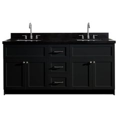 Ariel Hamlet 73 In. Double Sink Vanity With Absolute Granite Countertop In