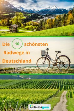 The most beautiful cycle paths in Germany GermanyLove by Url .- 10 routes for an incomparable bike tour in Germany: Elberadweg Diving Lessons, Bike Path, Baltic Sea, Travel Alone, Beautiful Places To Visit, Bike Life, Hiking Trails, Touring, Paths