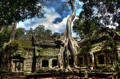 How intriguing! Looks like a place from the set of 'LOST'! Angkor, Cambodia