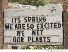 spring meme - Buscar con Google
