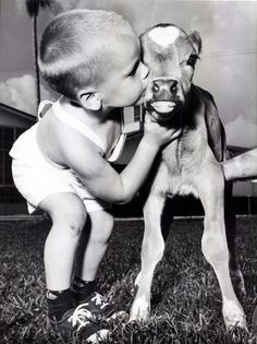 Child ~ With A Young Calf.