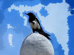 A crow sitting on a stone dome, surveying the world around, and highlighted against a blue sky above. This is more of an abstract image.