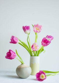 I love Tulpen!
