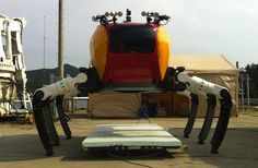 Next time you're at the beach, watch out for giant crab robots