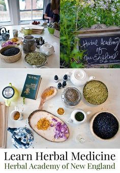 Are you curious about herbal medicine and have thought about taking a class? I've been invited by the Herbal Academy of New England to review their very popular online introductory course and have decided to write an update on my blog once a week until I finish. If you have any questions you'd like answered, please let me know and I can address them in my posts. Really looking forward to getting started!