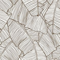 palm leaves illustration