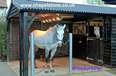 An #equine solarium built for a happy customer and his even happier horses! By Chapelstone Equestrian