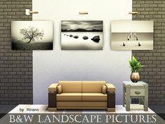 Rirann's B&W Landscape Pictures