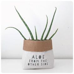 Aloe from the other side, plant pot cover, gift bag. Small Plants, Potted Plants, Paper Sack, Wedding Favors For Guests, The Other Side, Diy Birthday, Creative Inspiration, Flower Pots, Flowers