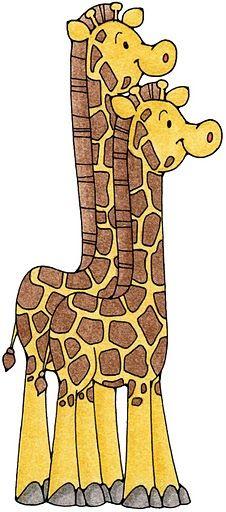 Arca de Noé - Casal de Girafas