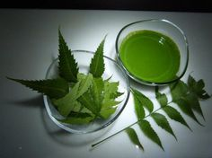 Neem is Beneficial for Health Gujarati Tips