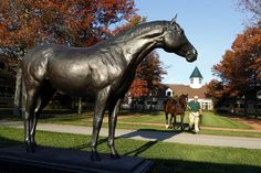A.P. Indy is led past a statue of himself at Lane's End in Midway, Kentucky. The 1992 American Horse of the Year has twice been the Leading US Sire, with offspring including Mineshaft, Bernardini, Pulpit, Rags to Riches, Music Note, Tempera, Festival of Light, Golden Missile, Marchfield, and Malibu Moon. Photo by Charles Bertram, Lexington Herald-Leader