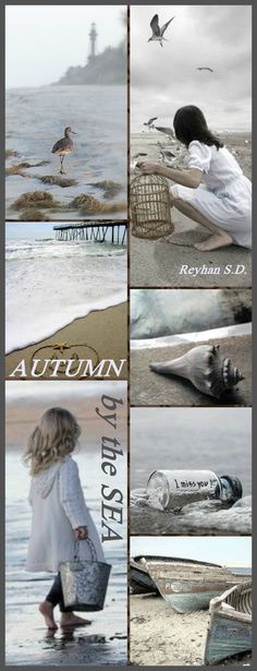 '' Autumn by the Sea '' by Reyhan S.D.