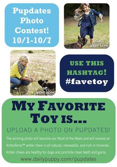 Would you like your puppy to become Woof of the Week?! Show us a photo of your precious pooch with his/her favorite toy and add the hashtag #favetoy to enter!