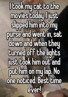 I took my cat to the movies today. I just slipped him into my purse and went in, sat down and when they turned off the lights just took him out and put him on my lap. No one noticed. Best time ever!