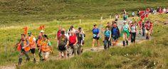 The Gathering - The Gathering Ireland 2013 - Castlebar International Four Day Walking Festival County Mayo, The Gathering, Live Music, Ireland, Walking, Sports, Hs Sports, Sport, Woking