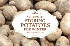 Potatoes are a staple crop in my garden. They are easy to grow, store well through the winter, and provide a nutritious addition to most of our meals. Whether you grow your own storing potatoes or purchase in bulk from farm stands, click the link below to read 5 Steps to Storing Potatoes for Winter: