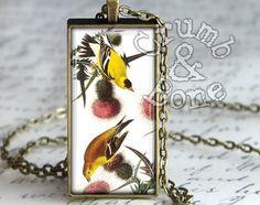 American Goldfinch Bird Necklace Audubon Birds by crumbandbone