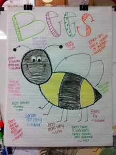 We learned about bees and wrote bee list poem.