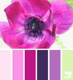 Flora bright http://design-seeds.com/index.php/home/entry/flora-bright5?utm_source=feedburner_medium=email_campaign=Feed%3A+DesignSeeds+%28design+seeds%29