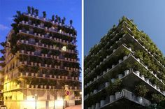 The first steps towards becoming sustainable and regenerative can be small, they can be simple. Like this architect, for example, who uses potted plants as a green facade, which requires less structure and soil, but also means the tenants can also leave their own mark on the way the building looks from the exterior. It may be simple, but every plant helps improve air quality.