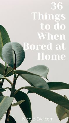 When boredom strikes don't be a victim to it! Counter it with a list of 36 unique things to do when bored Bored At Home, Creative Hub, Things To Do When Bored, Boredom Busters, Lifestyle Blog, Feel Good, Counter, Plant Leaves, The Past