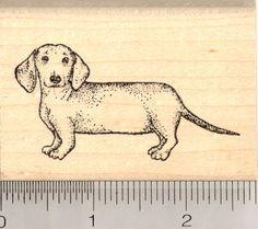 Dachshund Rubber Stamp, Weiner Dog J5014 WM